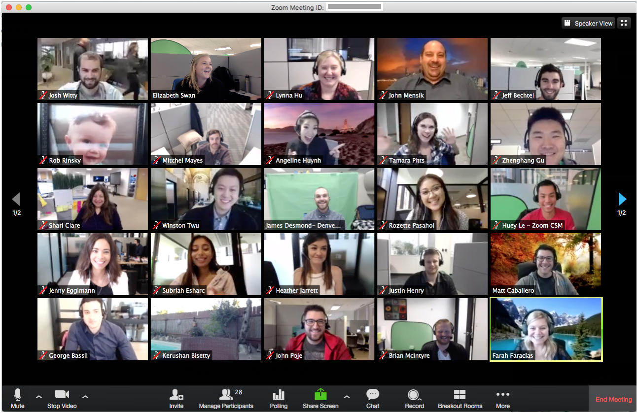 Ukázka Zoom meeting